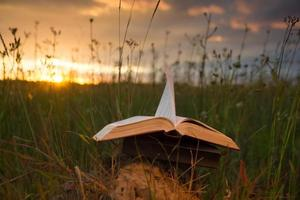 Livre relié ouvert avec des pages ventilées sur fond de nature floue