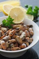 Frozen Sea Mussels photo