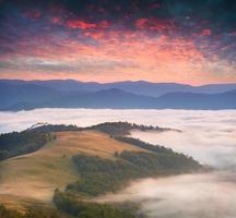 dramático nascer do sol de verão sobre o mar de nevoeiro.
