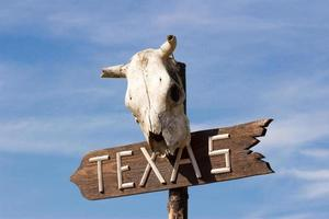 cartel de texas con cráneo de caballo viejo