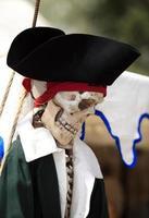"""""""pirata non più"""""""
