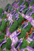 coronas conmemorativas