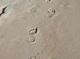 Footprints in the sand photo