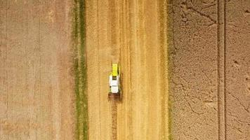Aerial view of corn fields - combined harvester