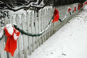 Bows on Fence