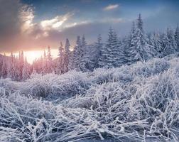 colorido amanecer de invierno en las montañas.