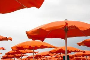 Umbrellas and sunbeds in Rimini and Riccione and Cattolica Beach photo
