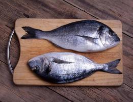 Two fresh gilt-head bream fish on cutting board photo