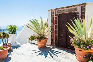 National Greek architecture, terrace with flowers