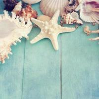 summer time with fish star and sea shells
