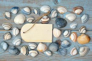 blue wooden background with  sea shells and tag empty label photo