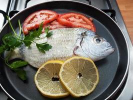 fresh fish photo