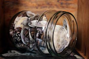 natural sea shells glass jar wooden background holiday souvenir photo