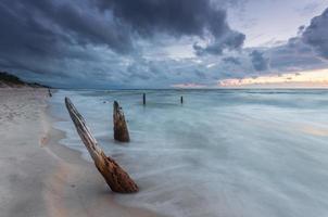 Costa del mar Báltico al atardecer, con troncos y raíces ahogados foto
