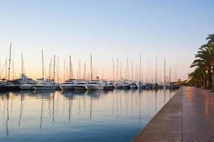 yachts at Majorca photo