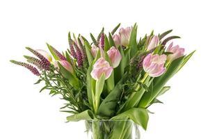 rose tulip