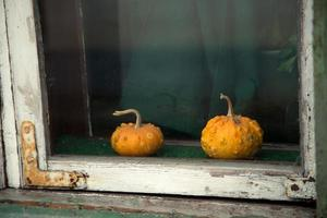 two vintage pumpkin