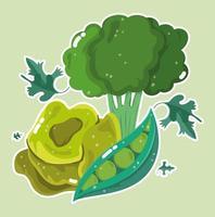 vegetales alimenticios. brócoli, lechuga y guisantes