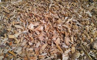 Some wood chips