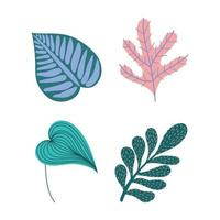 Set of tropical leaves and foliage  vector