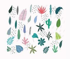 hojas tropicales y follaje vector