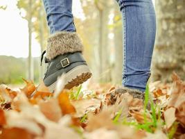 otoño photo