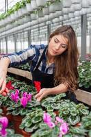 mulher florista trabalhando