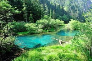 parque nacional jiuzhaigou en china foto