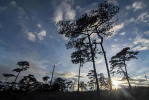 parque nacional phu soi dao tailandia foto
