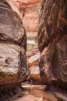 Zion National Park photo