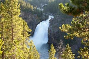 Yellowstone National Park, USA photo