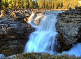 athabasca falls en el parque nacional jasper, alberta