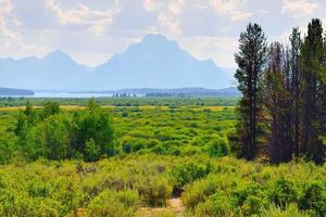 Grand Teton National Park in Summer photo