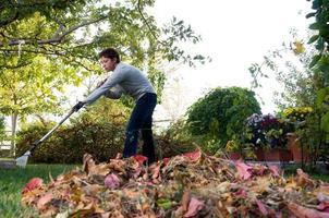 rastrillar las hojas. foto