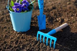 herramientas de jardin azul foto