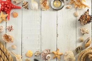 seashell on wooden background photo