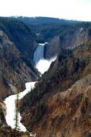 Yellowstone Canyon Artist Point vertical