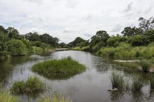 safari in kruger national park south africa