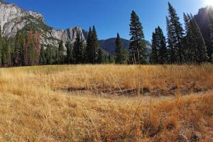 Beautiful  Yosemite Park photo