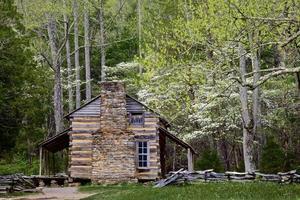 log cabin in spring