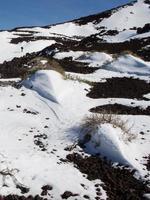 parque nacional del teide. tenerife, islas canarias.