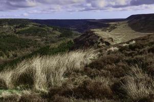 North York Moors al amanecer en primavera, Levisham, Yorkshire, Reino Unido.