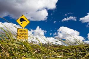 Kiwi Crossing road sign and volcano Ruapehu in NZ photo