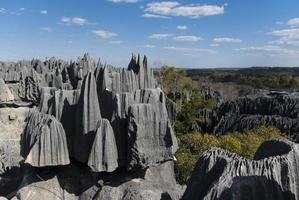 Tsingy de Bemaraha photo