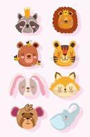 Raccoon, lion, bear, tiger, rabbit, fox, and monkey