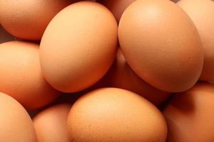 Fotografía de patrón de huevos para fondo de alimentos