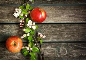 Apples with flowers on wooden board photo