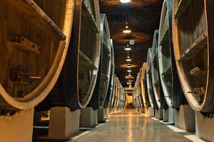 wine barrels in the cellars of winemakers photo