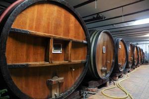 Oak wine barrels in a wine cellar