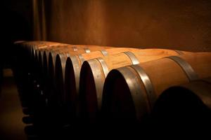Row of wine barrels in a dimly lit aging cellar
